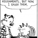 Title Troubles?; image from Calvin and Hobbes cartoon
